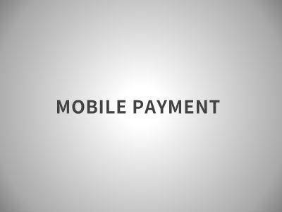 payment 幻灯片制作软件