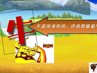 云南姚安第二届牛展 幻灯片制作软件