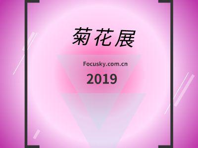 菊花展 幻灯片制作软件