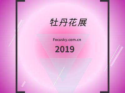 牡丹花展 幻灯片制作软件