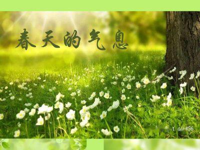 春日的气息