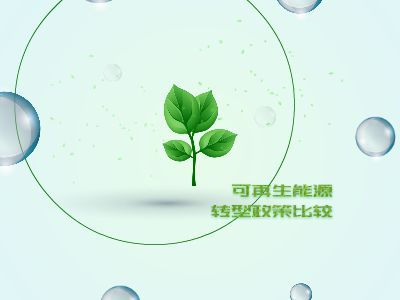 Environmental Economics Assignment by Soody 幻灯片制作软件