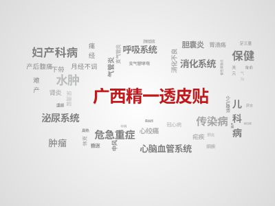 广西精一透皮贴_PPT制作软件,ppt怎么制作