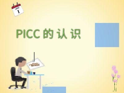 PICC的认识 幻灯片制作软件