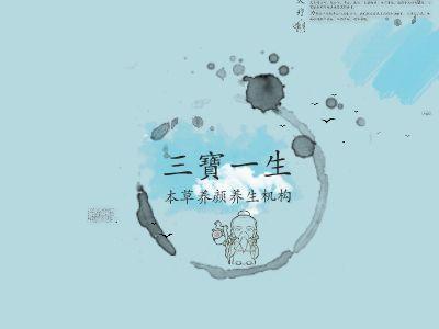 三宝一生 项目简介 幻灯片制作软件