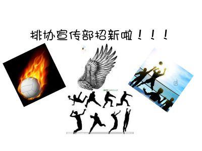 宣传部招新 幻灯片制作软件