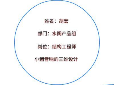 水阀产品组-胡宏 幻灯片制作软件