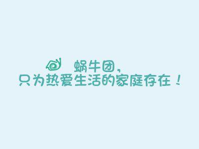 蜗牛团 幻灯片制作软件