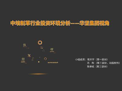 国际商务小组展示 幻灯片制作软件