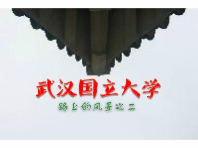 武汉大学——路上的风景之二