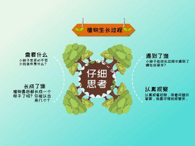 植物生長過程 幻燈片制作軟件