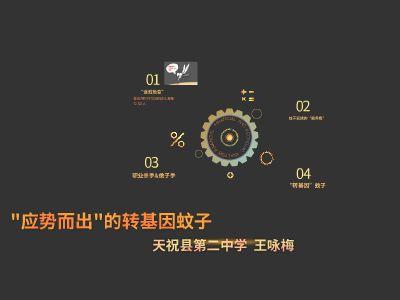 test1 幻燈片制作軟件