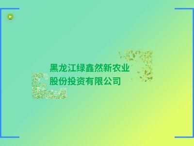 綠鑫然 幻燈片制作軟件