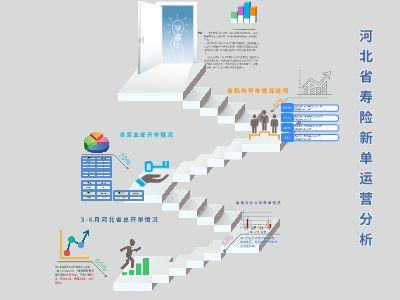 河北分寿险新单运营分析 幻灯片制作软件
