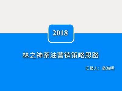2018林之神市场化拓展营销思路9 幻灯片制作软件