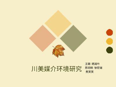 川美媒体研究 幻灯片制作软件