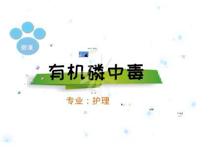 微课马丽华 幻灯片制作软件