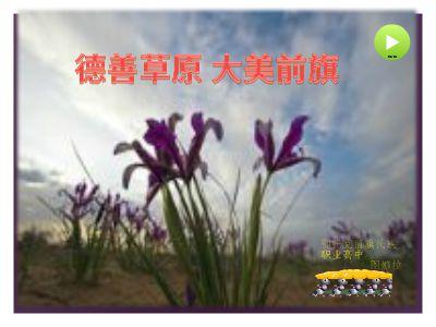 民族职业高中  萨日娜.xlsx 幻灯片制作软件