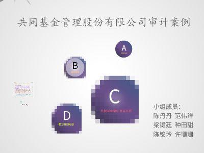 国际审计展示 幻灯片制作软件