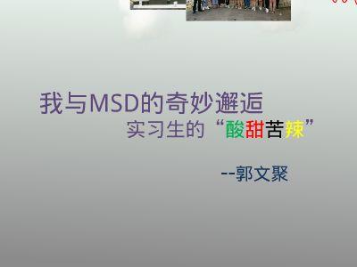 MSD 幻灯片制作软件
