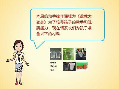 盆栽大变身 幻灯片制作软件