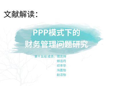第十五组公共财务组织展示 PPT制作软件