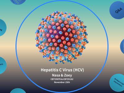 HCV 幻灯片制作软件
