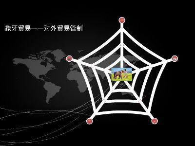 2017年底中国全面禁止象牙贸易 幻灯片制作软件