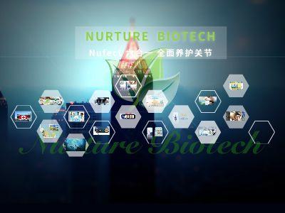 NURTURE BIOTECH 幻灯片制作软件