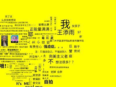 王添雨的自我介绍 幻灯片制作软件