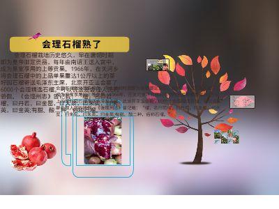 会理石榴熟了 幻灯片制作软件