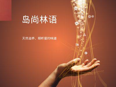 岛尚林语 幻灯片制作软件