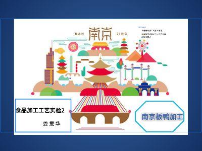 南京板鸭加工 幻灯片制作软件