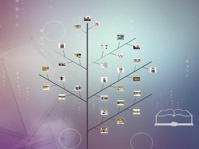 展览 幻灯片制作软件