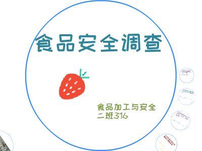 食品安全调查316 幻灯片制作软件