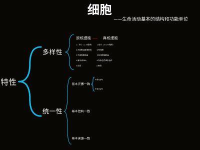 高一春季课(遗传) 幻灯片制作软件