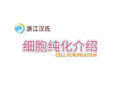 汉氏联合产品PPT 幻灯片制作软件