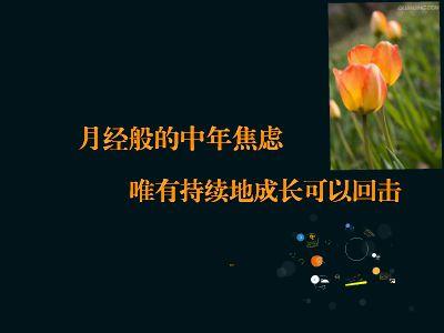 珉二少:焦虑 幻灯片制作软件
