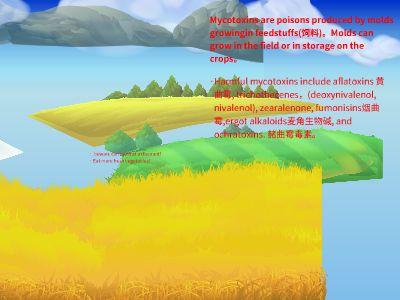Mycotoxins 幻灯片制作软件