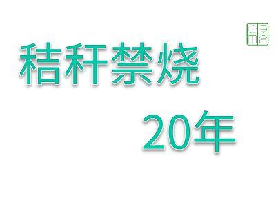 秸秆20年 幻灯片制作软件