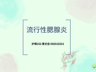护理163班 065016331 董文佳 幻灯片制作软件