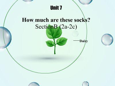 七年级上册UNIT7—SectionB-Reading 幻灯片制作软件