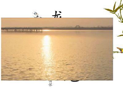 龙凤湿地 幻灯片制作软件