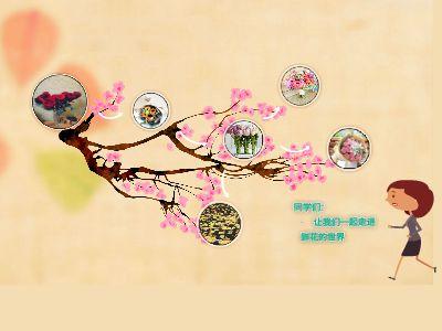 花团锦簇 幻灯片制作软件