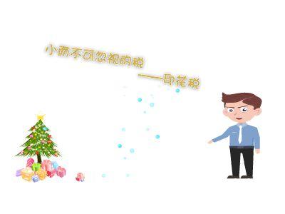 1印花税 幻灯片制作软件