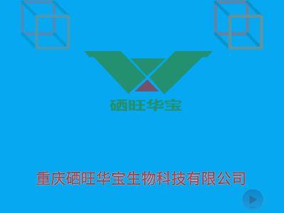 企业简介 幻灯片制作软件