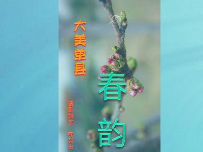 大美单县——春 幻灯片制作软件