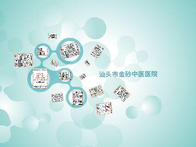 金砂专家特辑 幻灯片制作软件