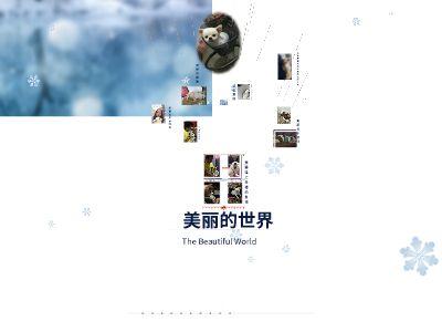 美丽的世界 幻灯片制作软件