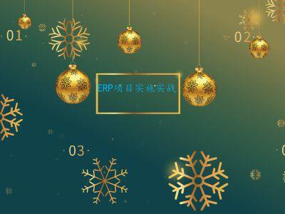 ERP项目实施实战 幻灯片制作软件